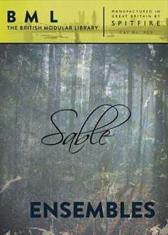 Sable Ensembles - 2D Image