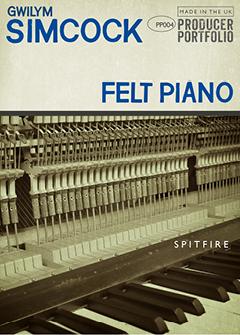 FELT PIANO 2D ICON