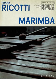 MARIMBA 2D ICON